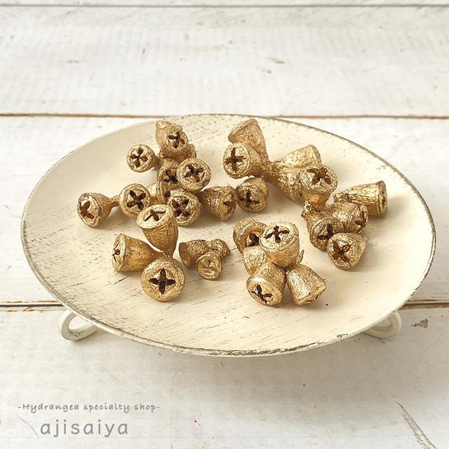 ユーカリの実 コニカルガムナッツ 【ゴールド】 木の実