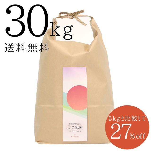 【新米】よこね米5kg 29年度産