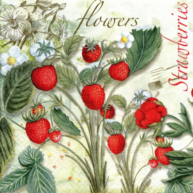 入荷しました|新入荷【Nouveau】バラ売り2枚 ランチサイズ ペーパーナプキン Strawberry Garden レッド
