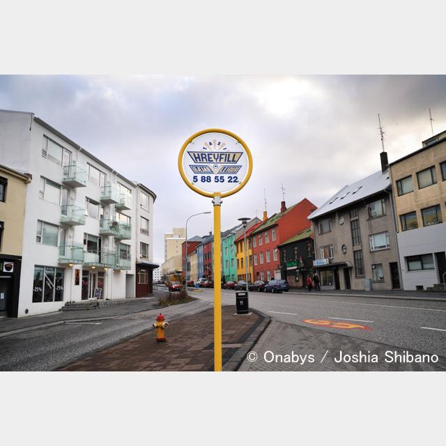 No.11-サイズM『Cats in Reykjavik #1』