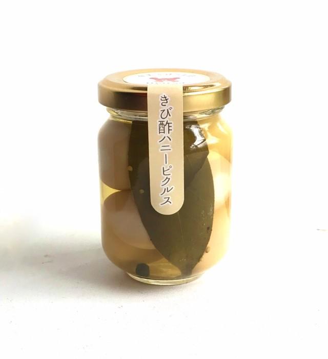 ゴーヤーのきび酢ピクルス