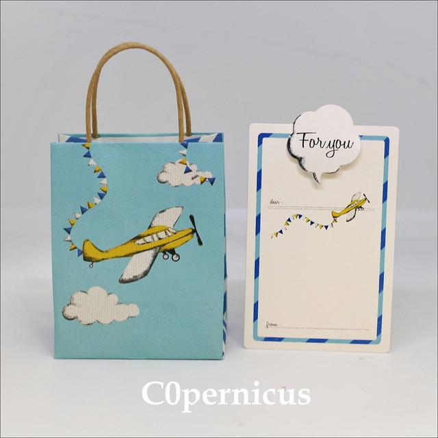 メッセージカード/紙袋/ギフト袋 (飛行機)浜松雑貨屋 C0pernicus  便箋・紙袋レターセット