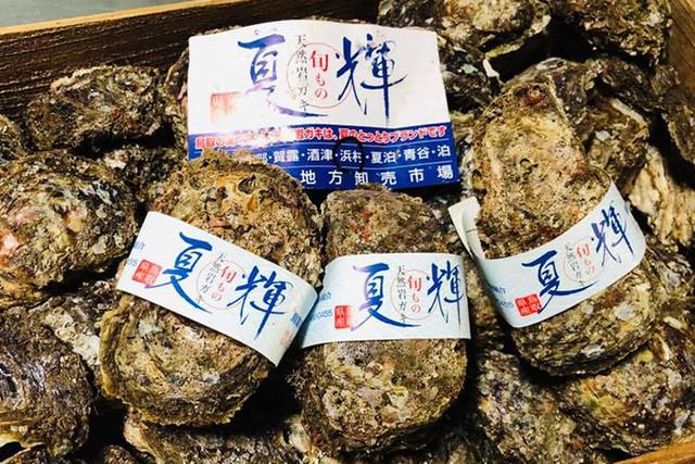 鳥取の天然岩牡蠣「夏輝」2kg入り