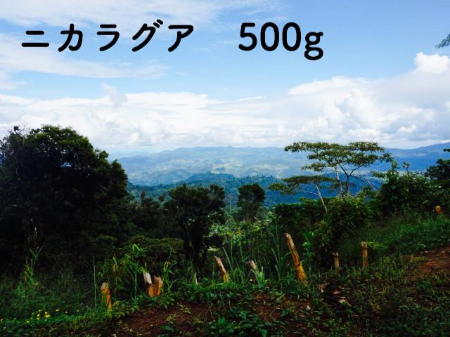 ニカラグア ラ・ウエジャ イエローパカマラ 浅煎り 500g