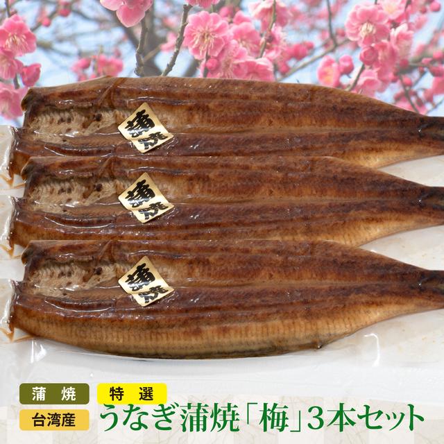 特選 台湾産うなぎ蒲焼 (梅3本セット)