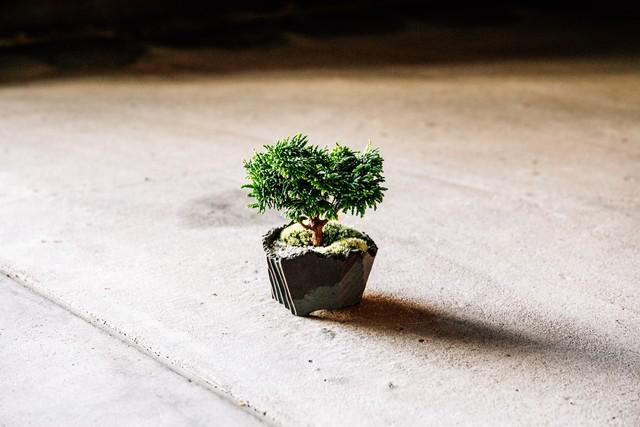 澪標-bonsai pot- / XS / Smoky Grey