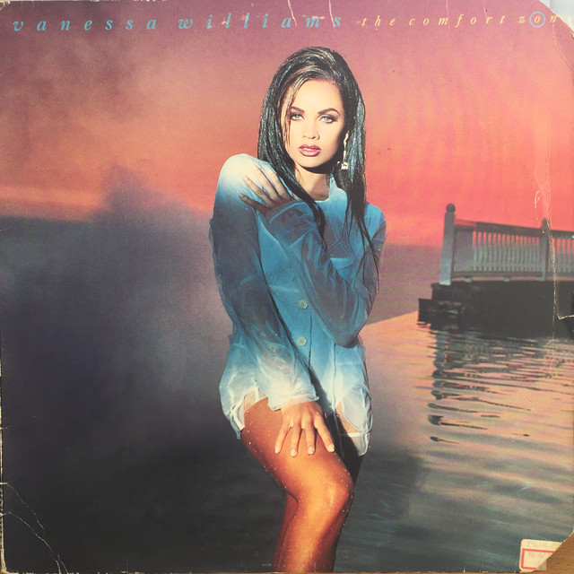 Vanessa Williams ‎– The Comfort Zone