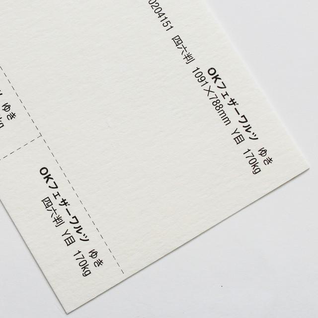 OKフェザーワルツ (ゆき) 120kg 4/6判