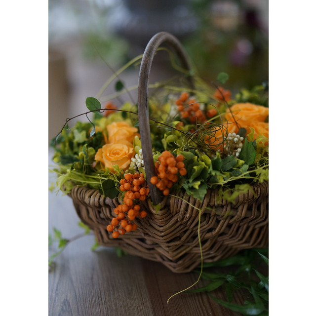【バスケットアレンジ】 グリーンのグラデーション紫陽花と、オレンジのローズと実物と