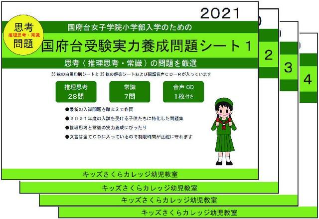 国府台女子学院小学部受験実力養成問題シート 第4集「数量」