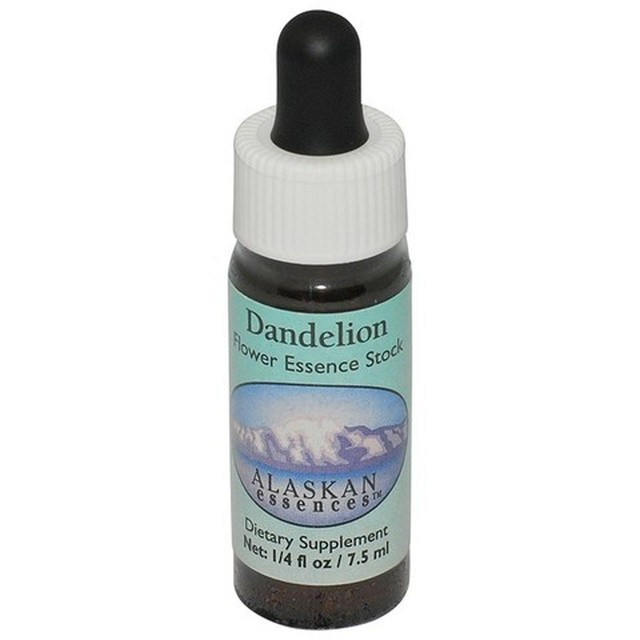 ダンデライオン[Dandelion]