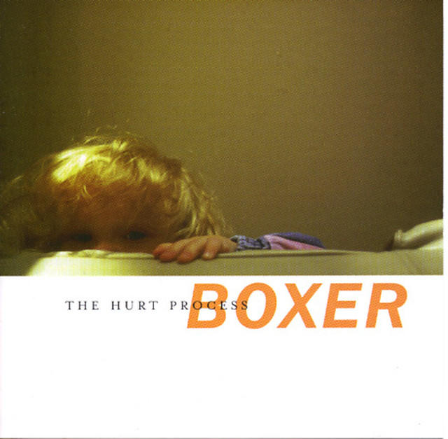 【USED】BOXER / THE HURT PROCESS