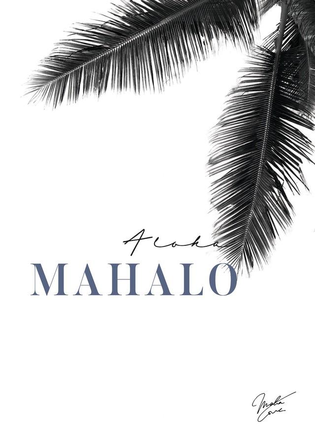 Craig Garcia × Lani Nina 作品名:laniopt - One palm tree  P10キャンバスフレームセット【商品コード: cglaniopt01】