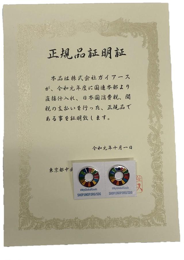 【2個】正規品証明書付SDGsピンバッジ『SDGs EVO』