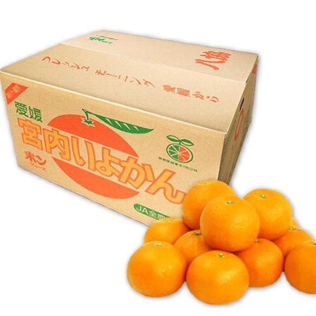 八協いよかん10kg箱 優品2LまたはLサイズ 愛媛西宇和産★送料無料 - メイン画像