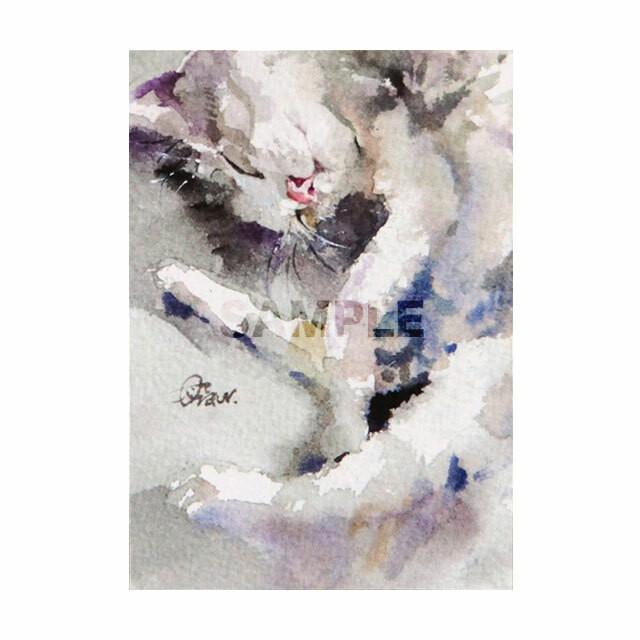台湾ポストカード 水彩猫「貓懶」
