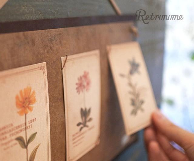 インテリアにもなる*植物の図鑑風メッセージカード