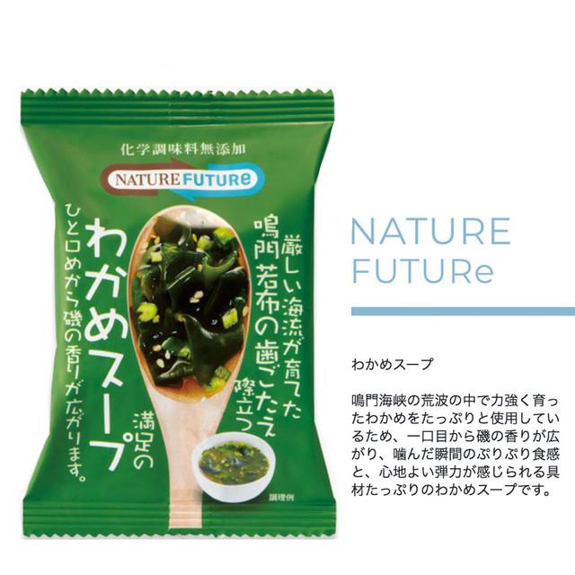 NATURE FUTURe 海苔スープ 10食