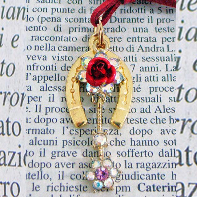 花(はな・ハナ)1 薔薇(ばら・バラ) 「健康・魅力アップ・夢を叶える」