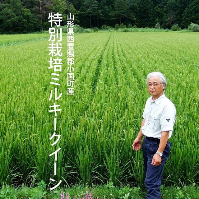 山形県西置賜郡小国町産特別栽培ミルキークイーン 2kg
