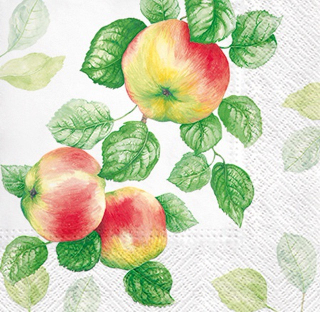 入荷しました|2020春夏【PAW】バラ売り2枚 ランチサイズ ペーパーナプキン GARDEN APPLE ホワイト