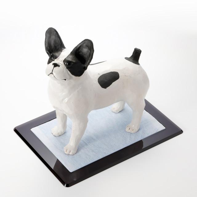 デザイン会社がつくった、犬用トイレ『Flat 』レギュラートイレシート用 | ペットデザイン家具ブランド「a i u e o CASA」