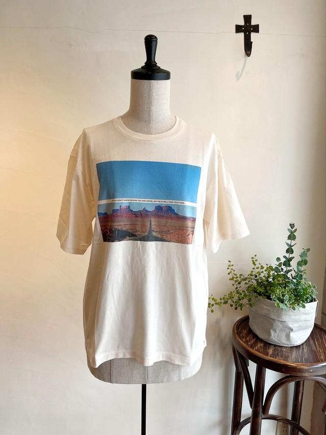 TICCA / MOUNTAIN Tシャツ