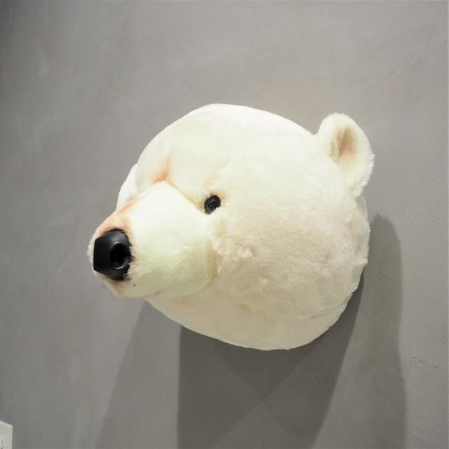 Animal Head Polar Bear