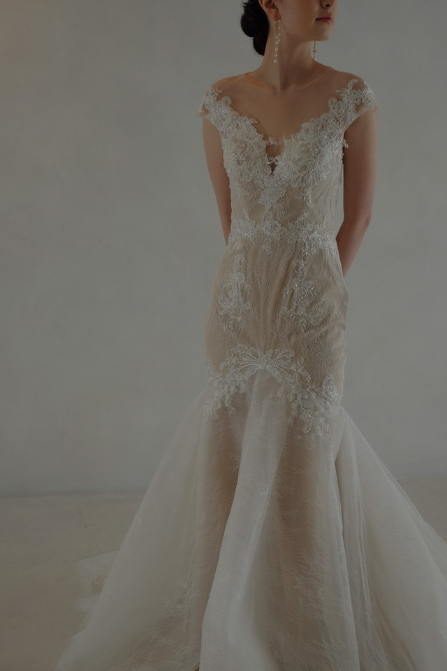 Wedding Dress/rental/Mermaid /DR2009