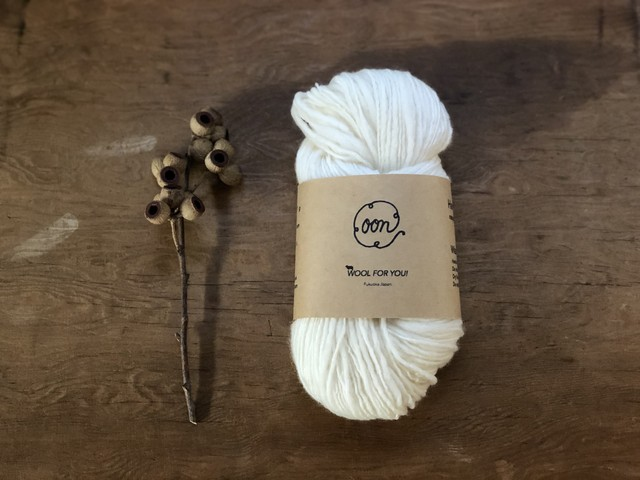 WOOL FOR YOU! <merino - white>