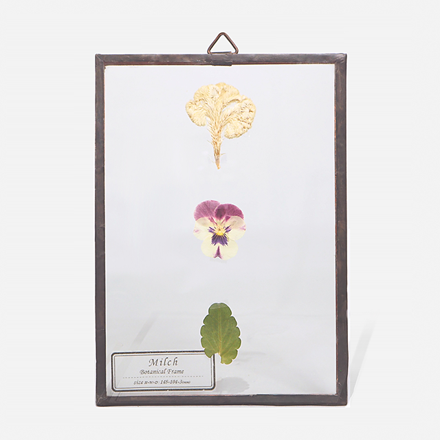 Botanical Frame S019 - Copper