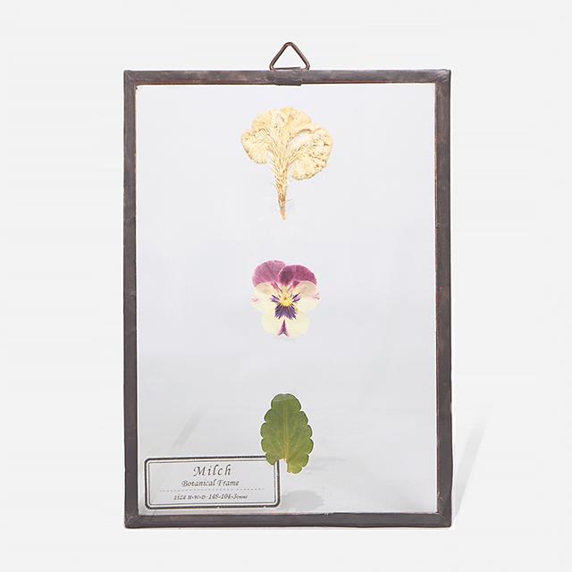 Botanical Frame S19 - Copper