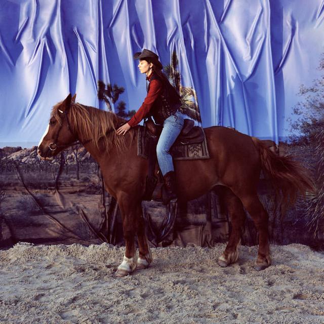 Holy Motors / Horse(LP)