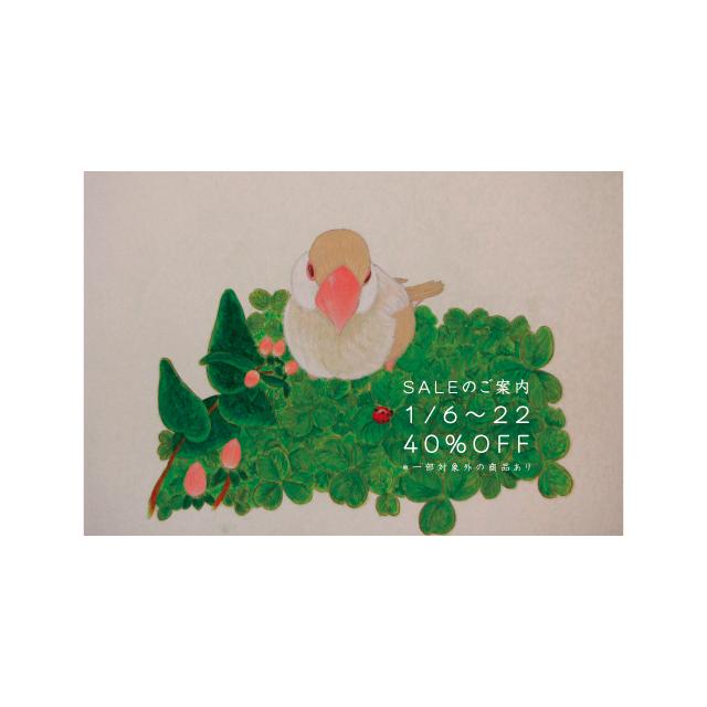 ポストカード はがき 印刷 通販【 クリーム文鳥とてんとう虫/100枚印刷 】高品質 DMにもおすすめ ネットでテンプレート印刷 選べるデザイン 絵柄面フルカラー印刷/宛名面モノクロ印刷 <HTG-009>| てがみや かみのもの