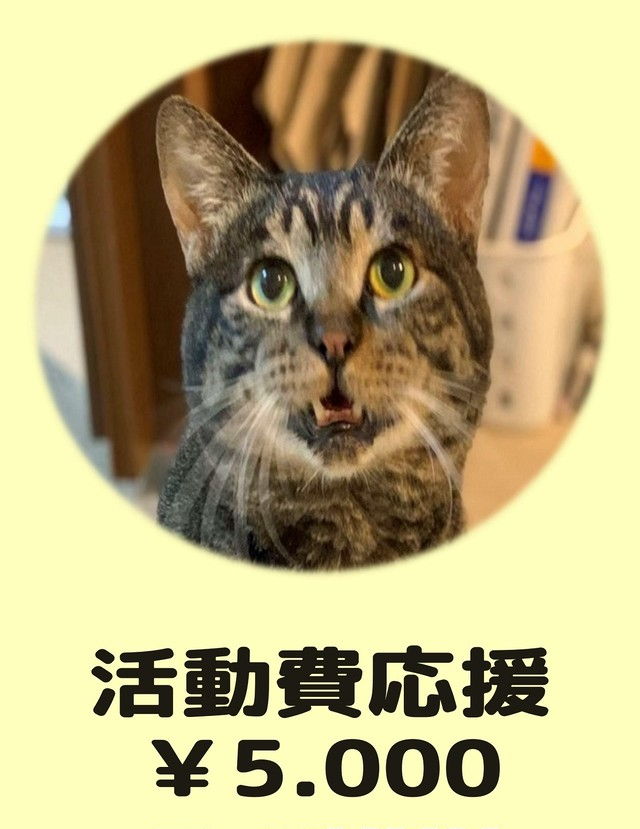 活動費応援 ¥5,000