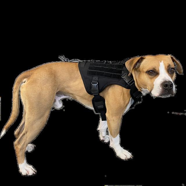 DOGGY BRO.#フロントフックループ ミリタリーハーネス【ブラック/S・Mサイズ】type 2