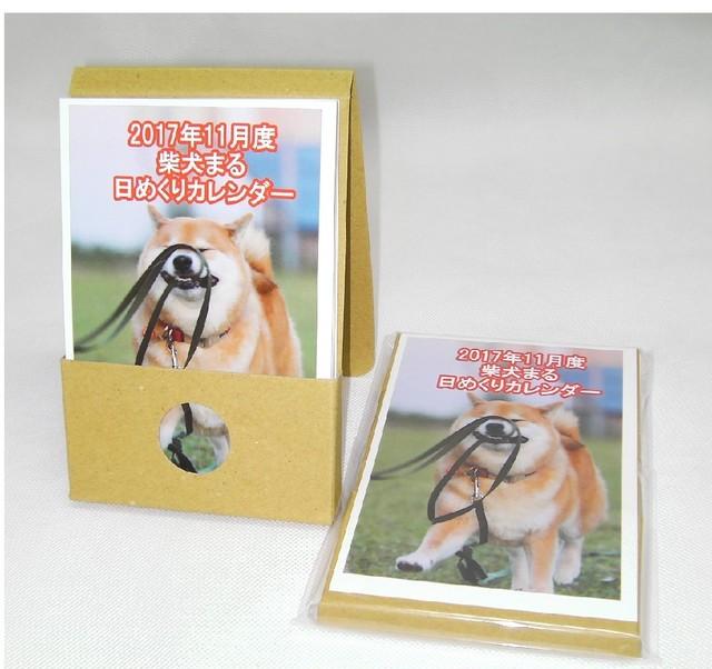 柴犬まる;日めくりカレンダー;2017年11月
