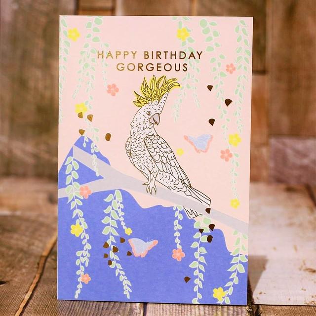 誕生日メッセージカード 0601-5浜松雑貨屋 C0pernicus  便箋・封筒レターセット