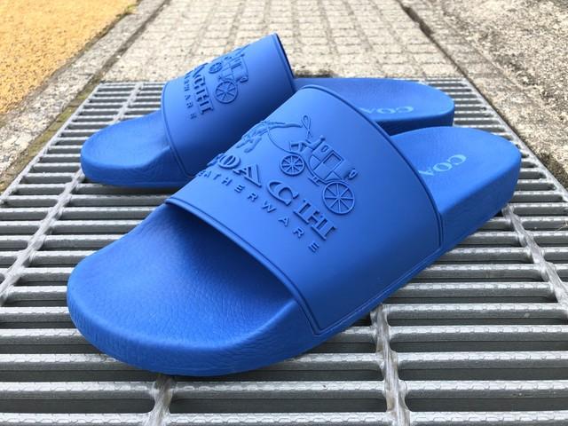 COACH 3D LOGO SLIDE (BLUE)