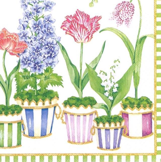 2021春夏【Caspari】バラ売り1枚 ランチサイズ ペーパーナプキン Window Garden ホワイト