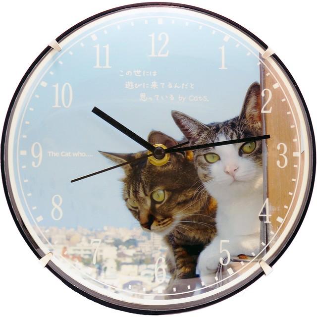 【送料無料】The Cat who.... 青空Cats クオーツ壁掛け時計(直径20cm)1個 (文字入れ無料対応、オプションのワイヤースタンドで置時計使用可能 ザ キャット フー 猫 ねこ 名入れ可能商品 贈り物 プレゼント ギフト GIFT)