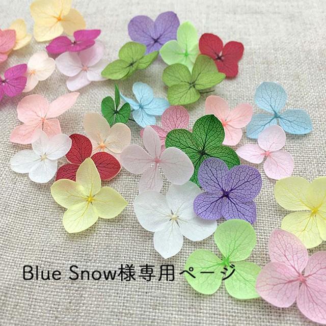 Blue snowさま専用ページ