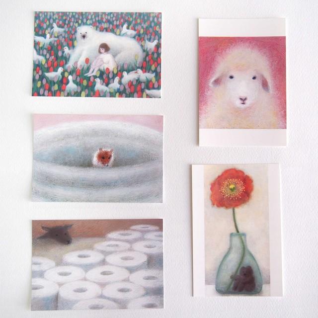 ポストカード5枚セット「ピンク」*ショップ内のポストカードと交換も可能*