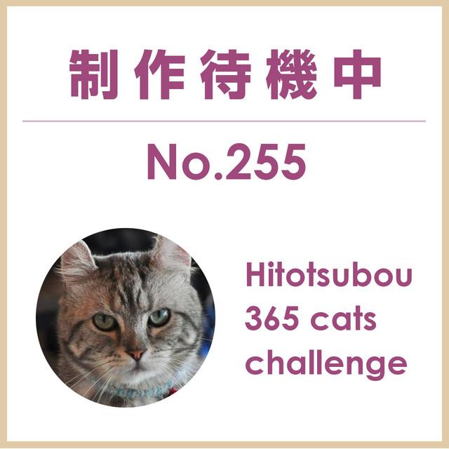 Hitotsubou 365 cats challenge No.255