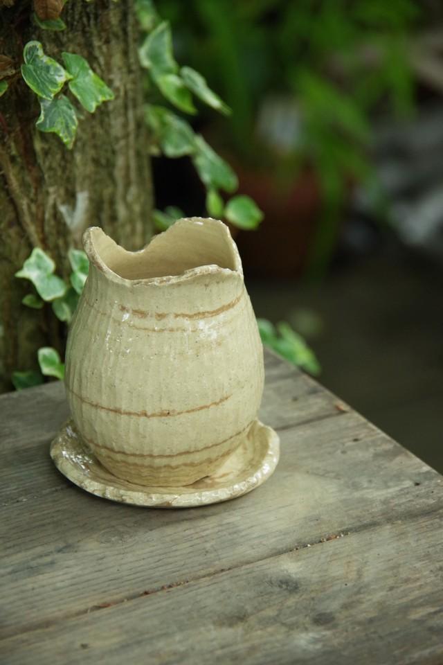 COCO植木鉢⑤【佐野 有子】