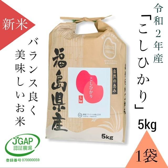 令和2年産「コシヒカリ5kg/紙袋(1袋)」