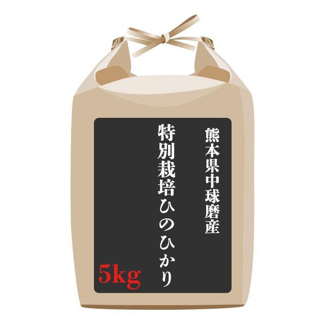 熊本県中球磨産特別栽培ひのひかり 5kg