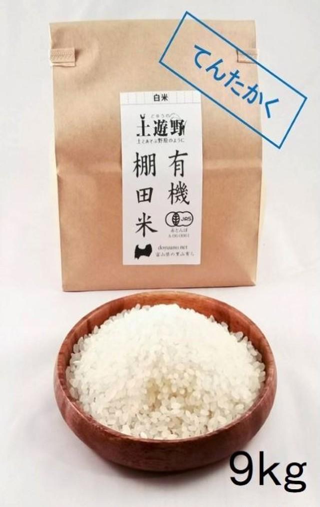 《令和2年産》有機棚田米コシヒカリ 白米 9㎏