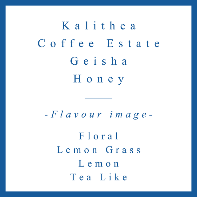 Kalithea  Geisha Honey