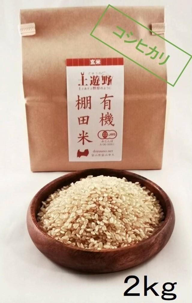 《令和元年産》有機棚田米イセヒカリ 玄米 2㎏